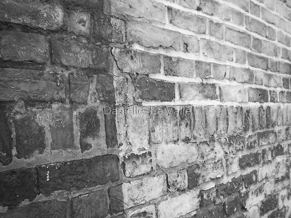 Bricks by Danielle  La Valle