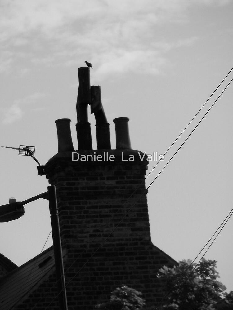Chimney Pots by Danielle  La Valle