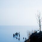 Into The Lake by metriognome