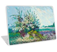 Sachuest Point Laptop Skin