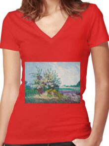 Sachuest Point Women's Fitted V-Neck T-Shirt