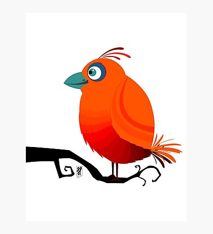 Cool Orange Bird Photographic Print