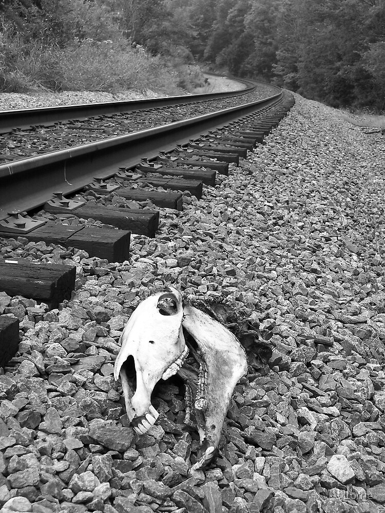 Death by the Tracks by Lorrie