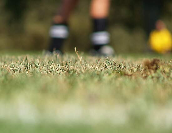 On the Pitch by Kara Rountree