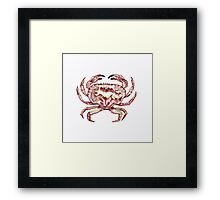 Colour Crab! Framed Print