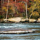 Autumn on the Cumberland River by mcstory
