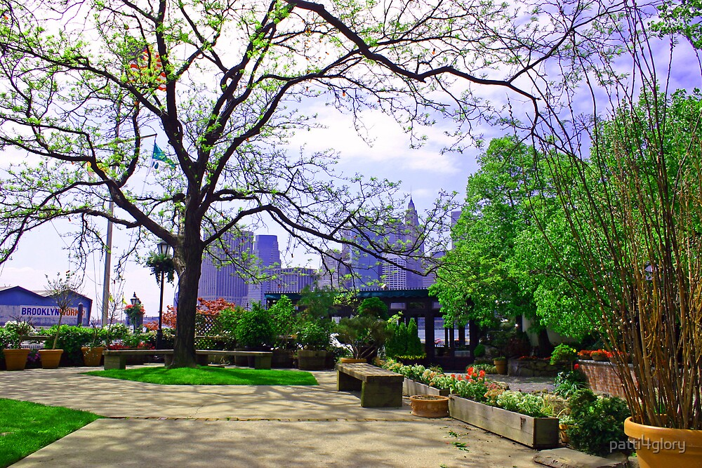 Brooklyn in the Spring by patti4glory