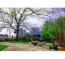 Brooklyn in the Spring Photographic Print