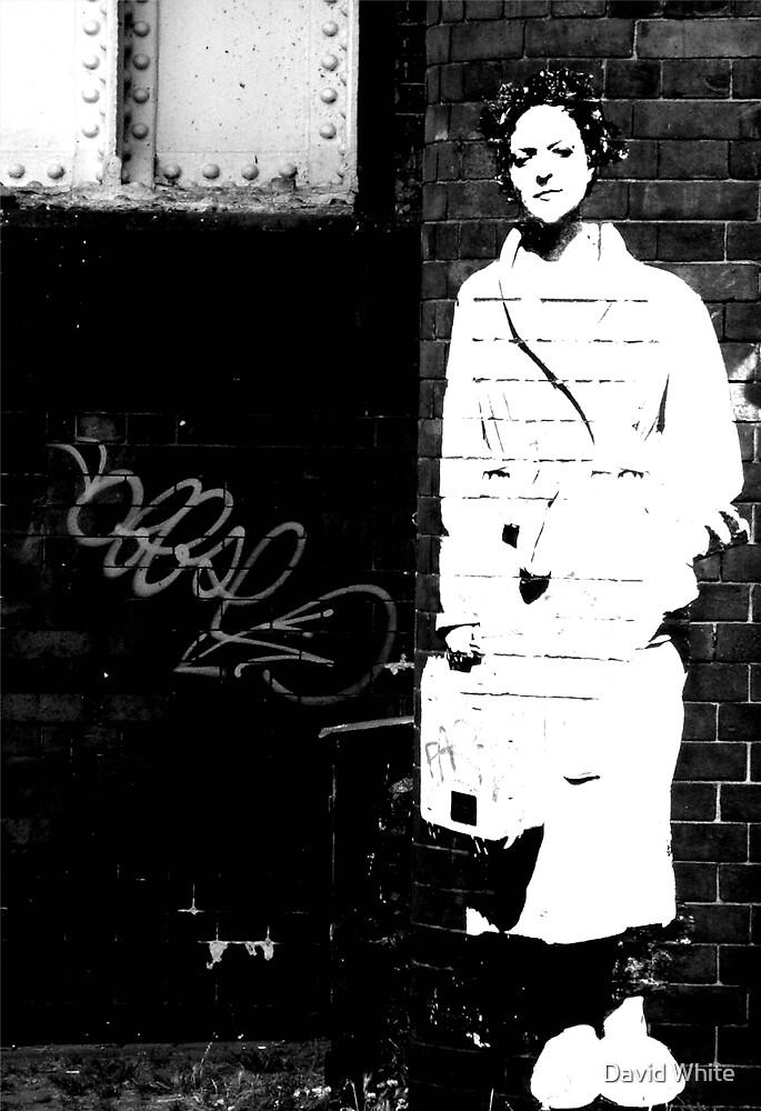 Urban Wall Flower  by David White