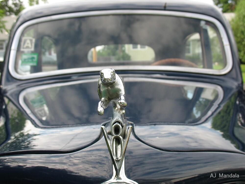 1935 Ford by AJ  Mandala