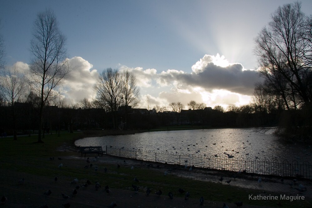 Silhouette of Oosterpark by Katherine Maguire
