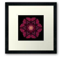Beach Rose I Framed Print