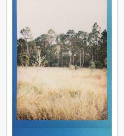 Polaroid Num. 1 Sticker