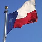 Texas, My Texas by courier