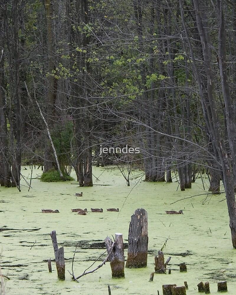 Ducks on Pond by jenndes