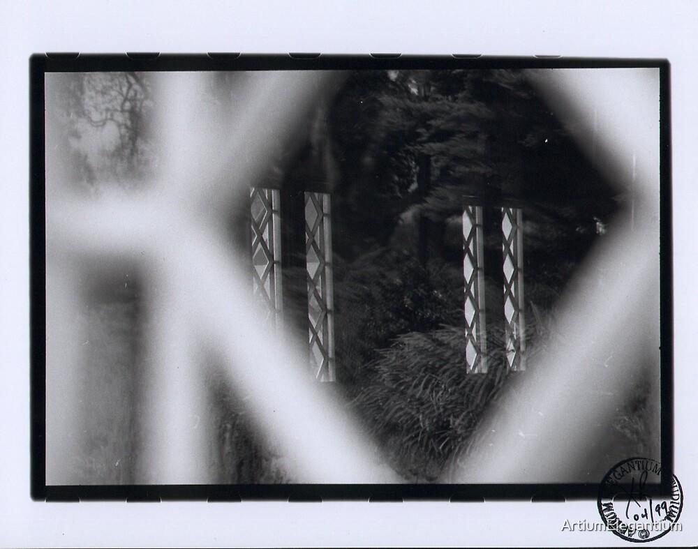 Untitled by Xavier Radic by ArtiumElegantium
