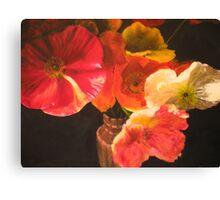 Sunlit Poppies Canvas Print