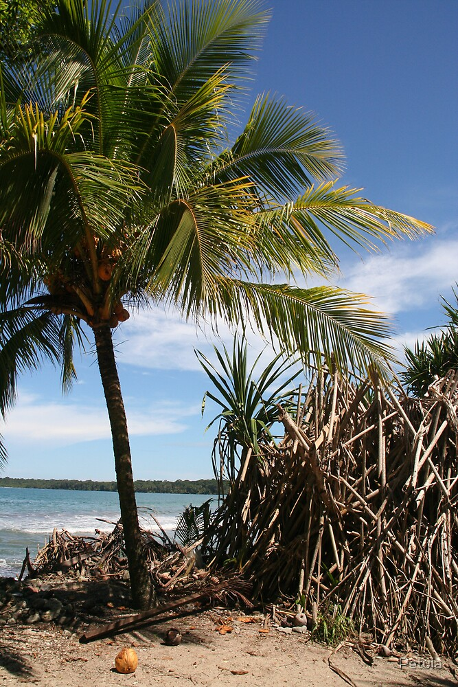 Costa Rica 05 by Petula