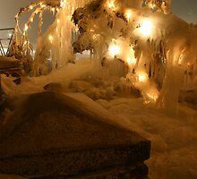 Ice Tree by Drew Waddingham