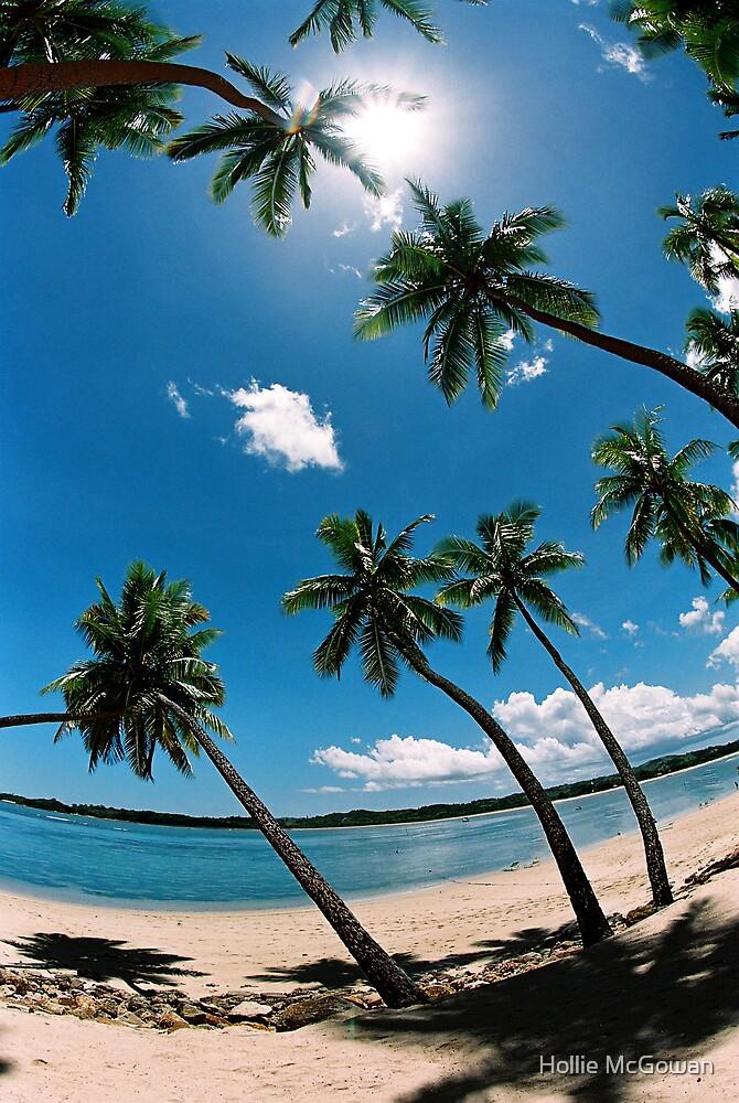 Palm Tree's by Hollie McGowan