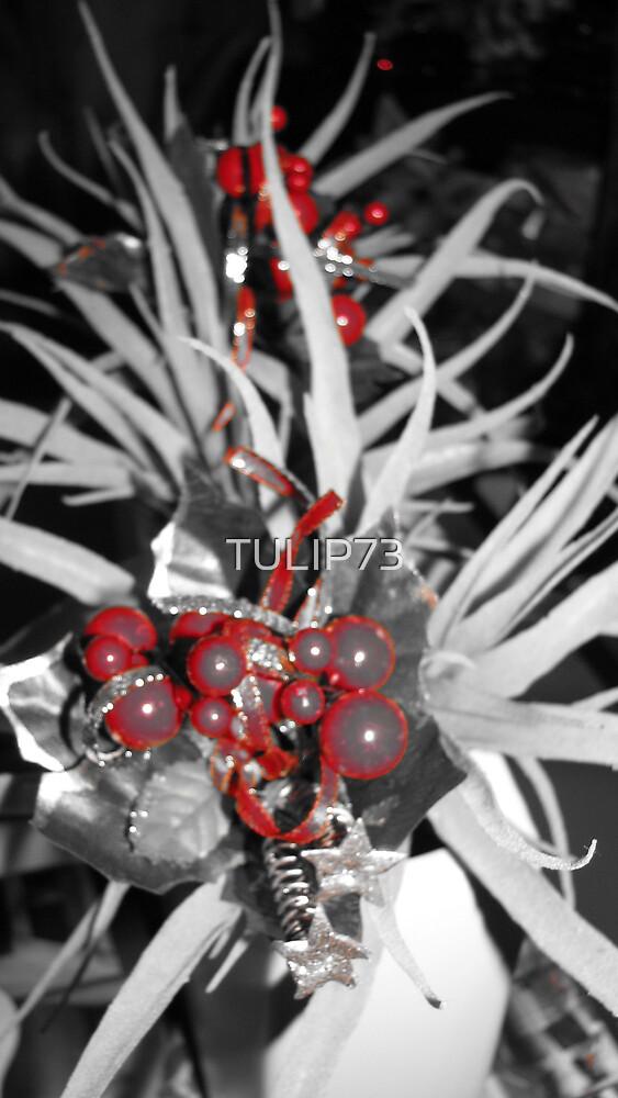 XMAS by TULIP73