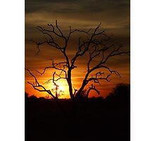 Sunset over the Okavango delta Photographic Print