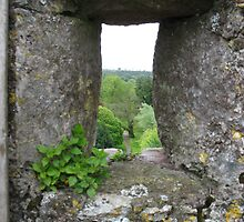Blarney Castle by Splogy