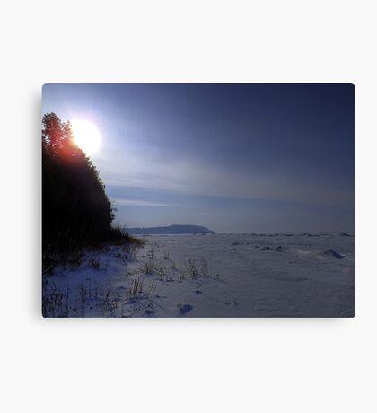 Desolate Winter Lake Canvas Print
