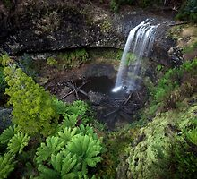 Tarraleah Falls, Tasmania by Jim Lovell