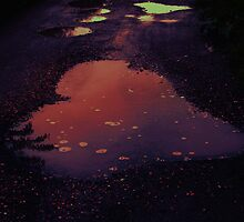 heart shaped puddle by Mayee  Lim