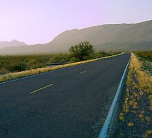 Park Road - Big Bend National Park by Chuck Underwood