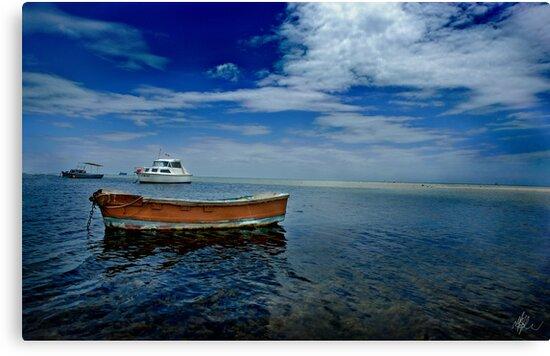 Dromana, Mornington Peninsula by Melinda Kerr