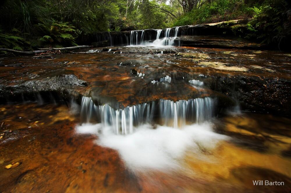 Jamison Creek, Wentworth Falls by Will Barton