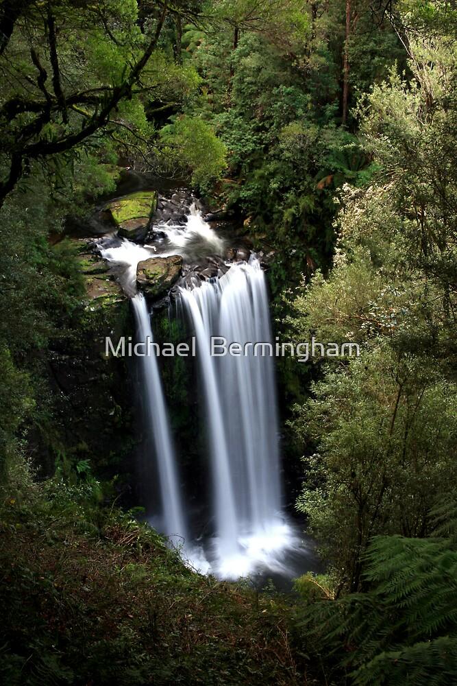 Hopetoun Falls Victoria by Michael  Bermingham