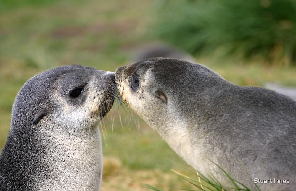 First kiss by Stuart Innes