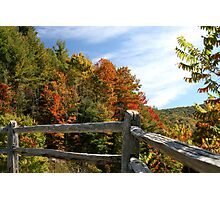 Autumns Splendor  Photographic Print