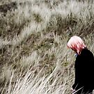 alone by grayscaleberlin