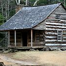 Carter Shields Cabin II by Gary L   Suddath