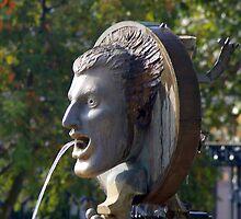 The fountain by Steve plowman