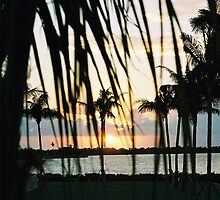 Every Sunset in The Florida Keys is unique & diferent by kristiepatricia