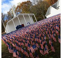 Field of Flags by kristiepatricia