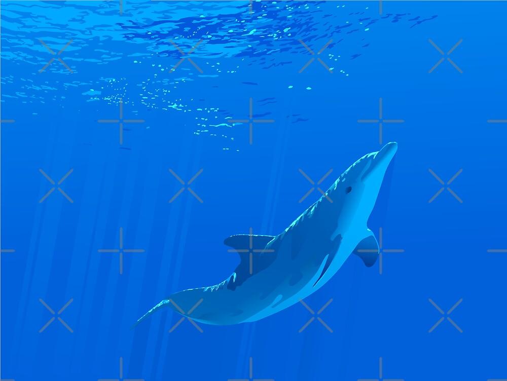 Dolphin Swim by William Fehr