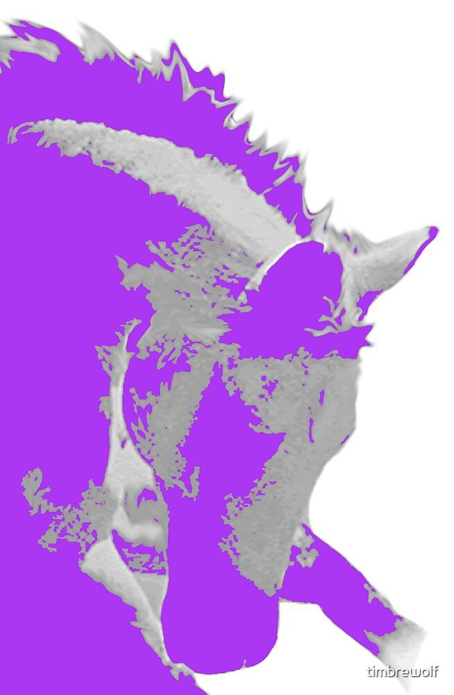 Spirit by timbrewolf