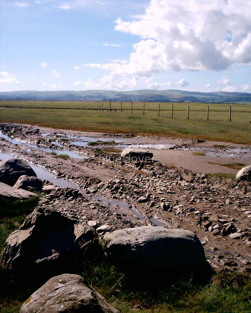 Rocks on Morecambe Bay by blueclover