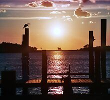 Ocracoke by janesays