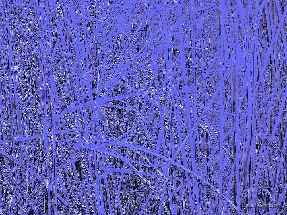 Blue Wheat by Susan Grissom