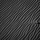 Death Valley Dunes by Denise J. Johnson