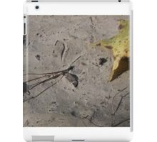 Still Life on the Dirt Lane iPad Case/Skin