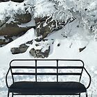 Snowbench by Susan R. Wacker