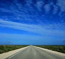 Nullarbor by Michael  Bermingham